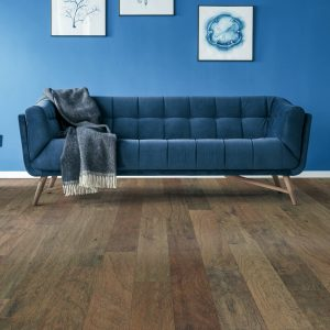 Blue couch with colorwall | Westport Flooring