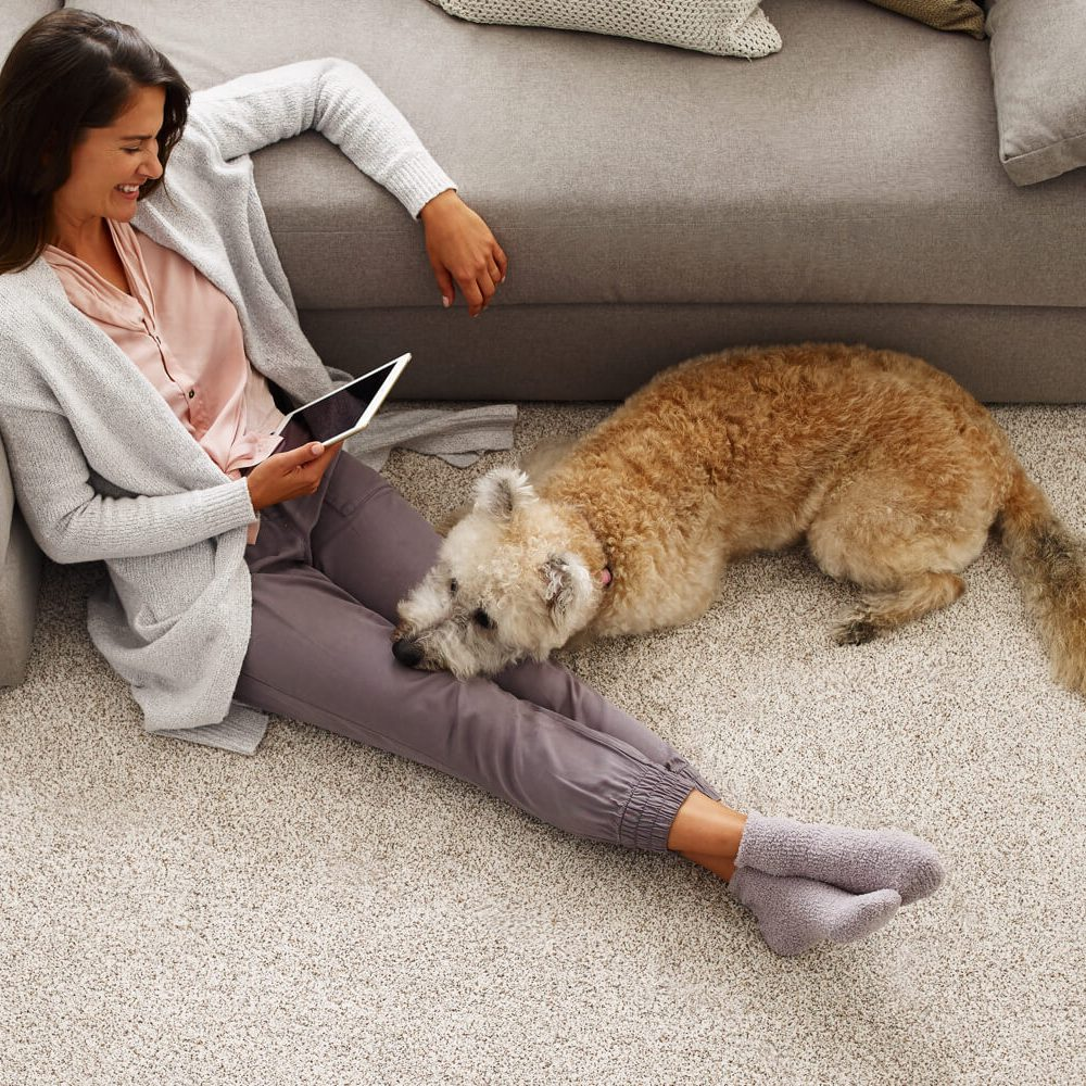 Woman with pet on Carpet | Westport Flooring